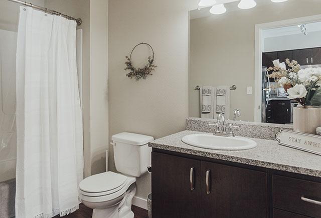 Stevens Creek Apartments Bath